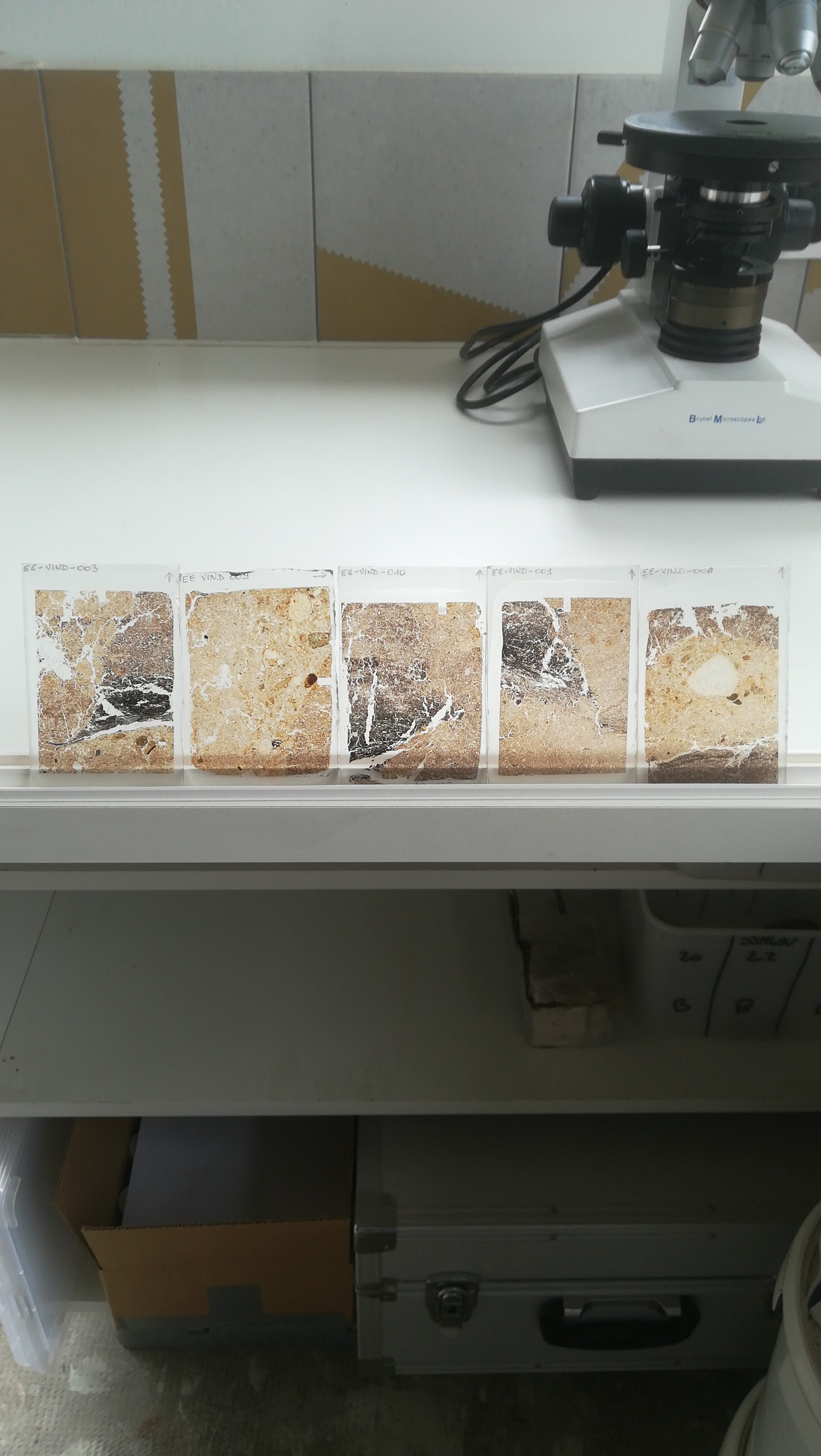 Scottish Turf Mound Thin Sections