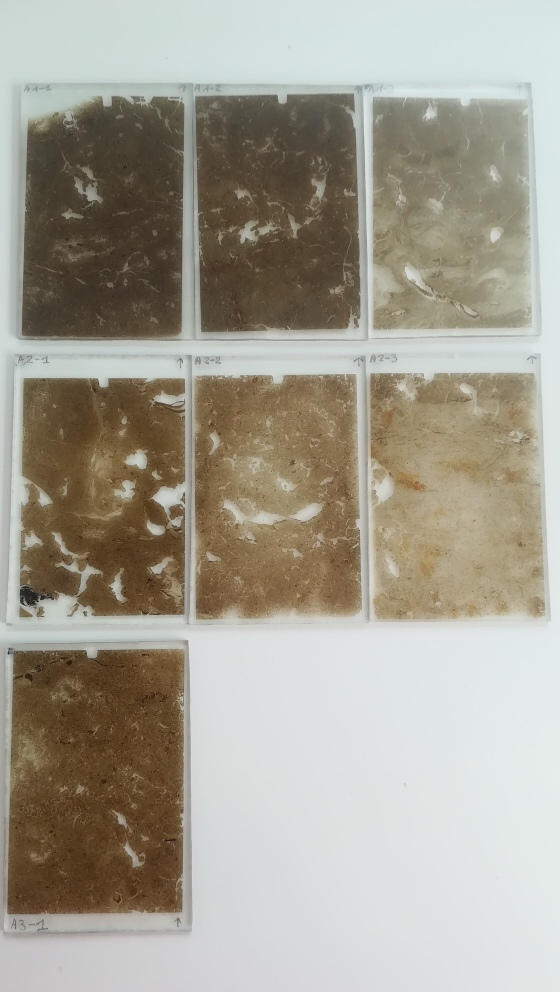 Micromorphological thin sections from Netherlands soils